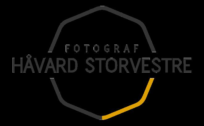 Håvard Storvestre